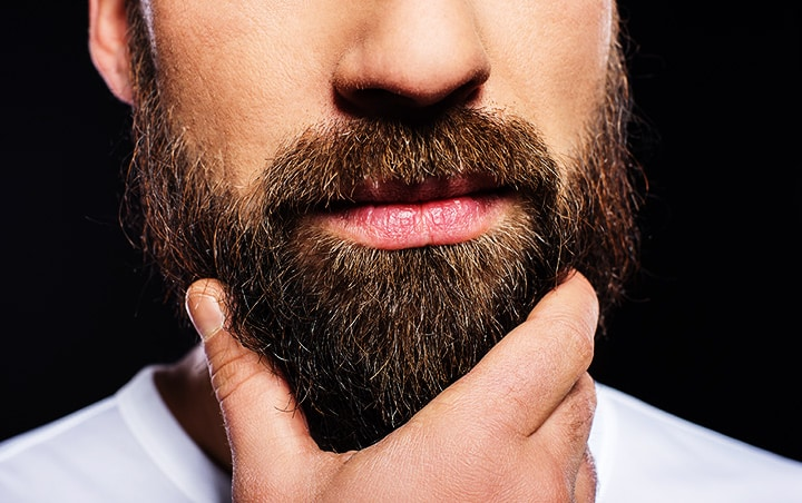 8a79e62205e3 5 Best Beard Brushes: Take Your Beard To The Next Level